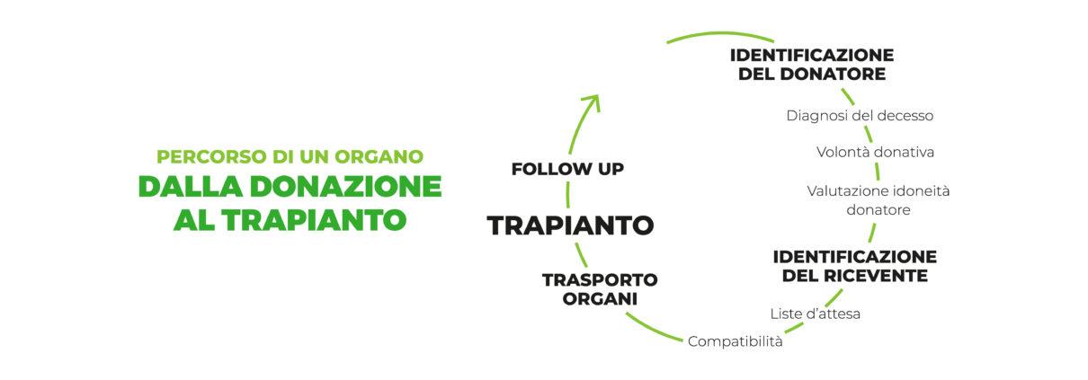 fasi_donazione_organi